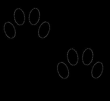 Cat Paw Png Cat Paw Prints